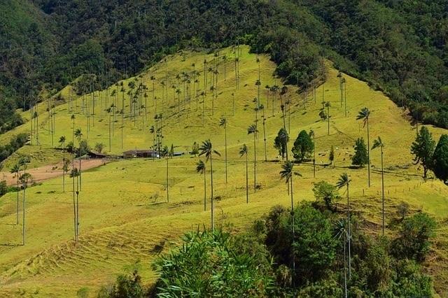 qué ver en Colombia